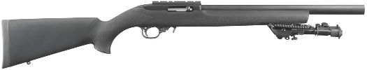 gun picture